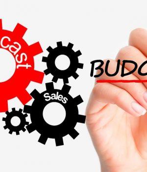 SEO Forecasting and Budgeting