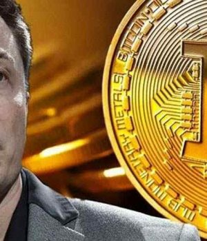 Elon Musk and His Manipulation of the Price of Bitcoins