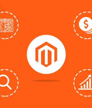 10 Reasons to Choose Magento Development Services for Your Ecommerce Business
